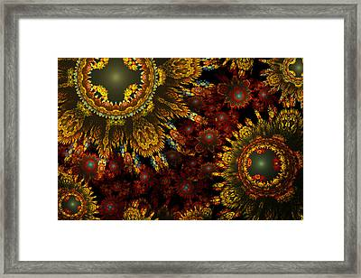 Bumper Crop Framed Print by Phil Clark