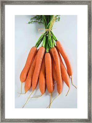 Bunch Of Carrots (daucus Carota Framed Print by Nico Tondini