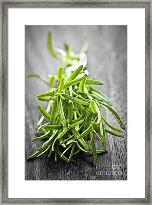 Bunch Of Fresh Rosemary Framed Print by Elena Elisseeva
