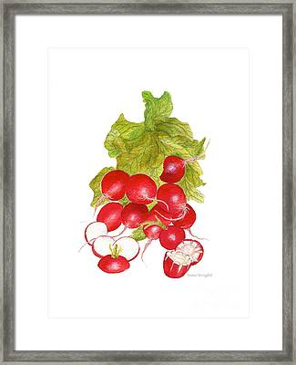 Bunch Of Radishes Framed Print by Nan Wright