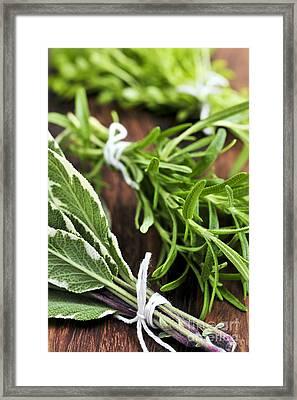 Bunches Of Fresh Herbs Framed Print by Elena Elisseeva