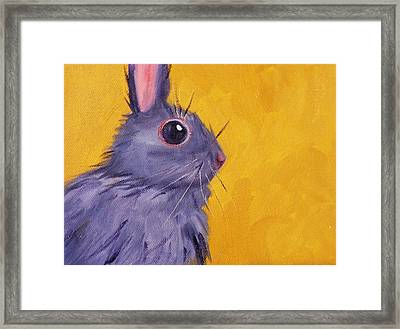 Bunny Framed Print by Nancy Merkle