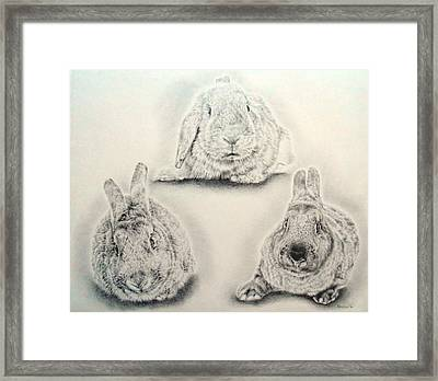 Bunny Triangle Framed Print by Remrov Vormer
