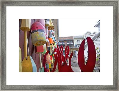 Buoys And Lobster Claws Framed Print by Betsy C Knapp