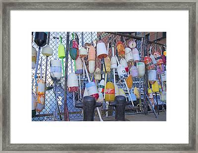 Buoys Framed Print by Betsy C Knapp