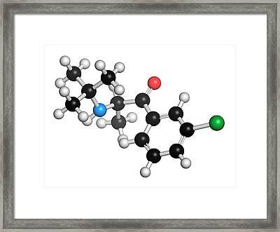 Bupropion Antidepressant Drug Framed Print by Molekuul