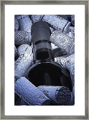 Buried Wine Bottle Framed Print by Tom Mc Nemar