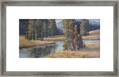 Burnished Meadow Framed Print by Mar Evers
