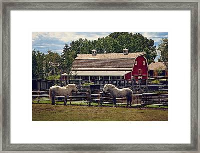 Burns' Barn Framed Print by Maria Angelica Maira