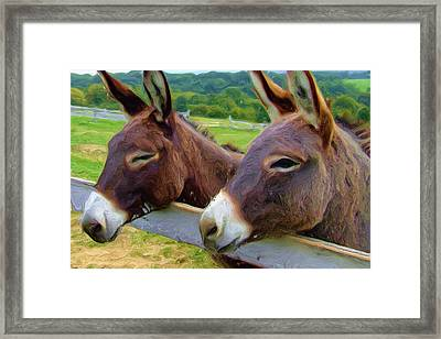 Burro Gang Framed Print by Ayse Deniz