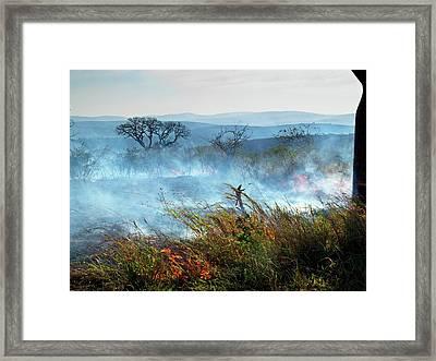 Bush Fire Framed Print by Bildagentur-online/mcphoto-schaef