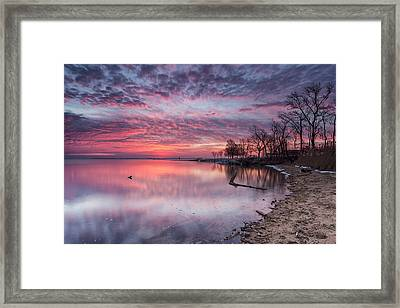 But A Brief Moment Framed Print by Edward Kreis