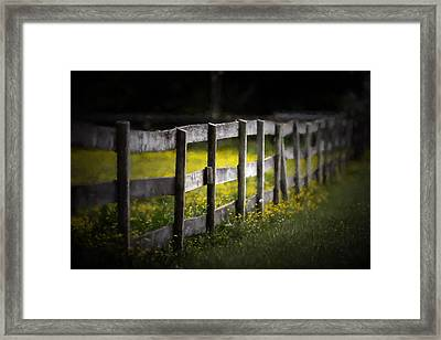 Buttercup Fence Line Framed Print by Earl Ball