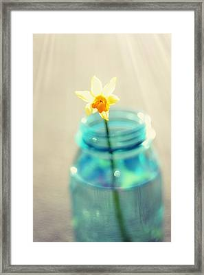 Buttercup Photography - Flower In A Mason Jar - Daffodil Photography - Aqua Blue Yellow Wall Art  Framed Print by Amy Tyler