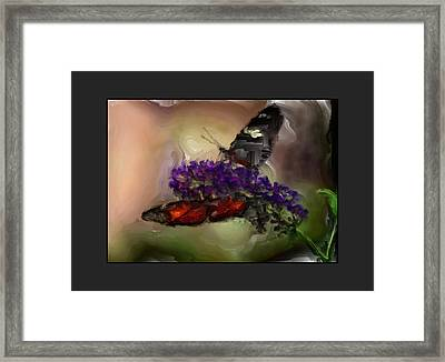 Butterflies At The Park Framed Print by Kelly Gibson