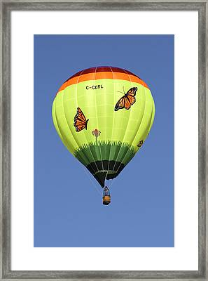 Butterflies  Framed Print by Mike McGlothlen