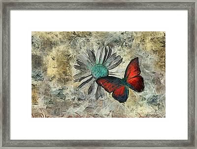 Butterfly And Daisy - Ftd01t01 Framed Print by Variance Collections