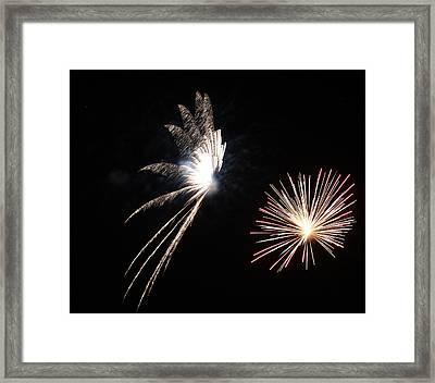 Butterfly And Flower Fireworks Framed Print by Howard Tenke