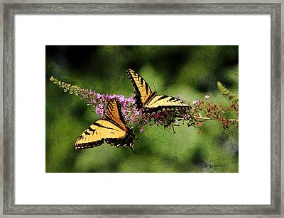 Butterfly And Texture - Featured In Photography/textures And Wildlife Groups Framed Print by EricaMaxine  Price