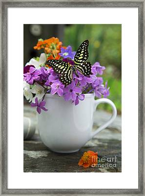 Butterfly And Wildflowers Framed Print by Edward Fielding