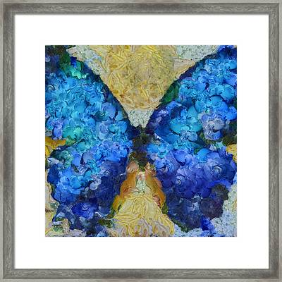 Butterfly Art - D11bb Framed Print by Variance Collections
