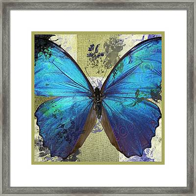 Butterfly Art - S01bfr02 Framed Print by Variance Collections