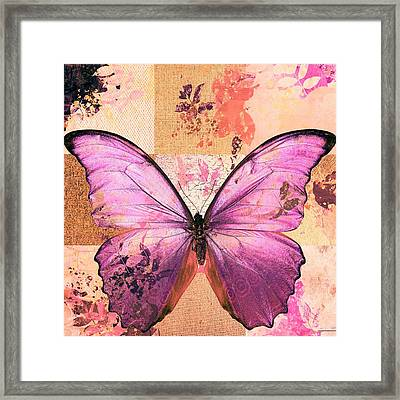 Butterfly Art - Sr51a Framed Print by Variance Collections