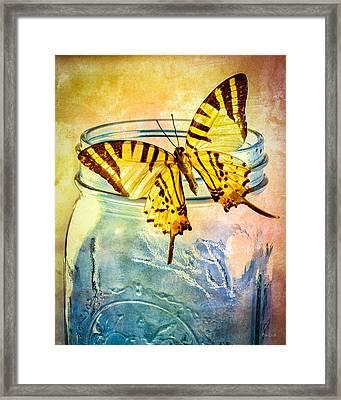 Butterfly Blue Glass Jar Framed Print by Bob Orsillo
