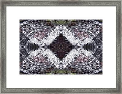 Butterfly Effect Framed Print by Dawn J Benko