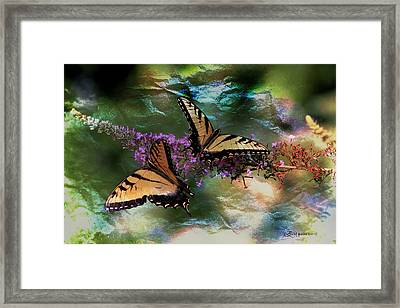 Butterfly Friends Framed Print by EricaMaxine  Price