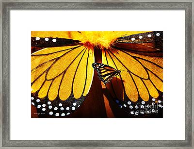 Butterfly Hitching A Ride 2 Framed Print by Nancy E Stein
