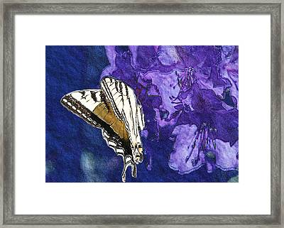 Butterfly In Blue Purple And Brown Framed Print by Belinda Greb