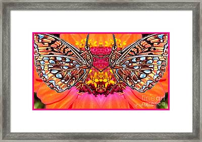 Butterfly Jig Framed Print by Kimberlee Baxter