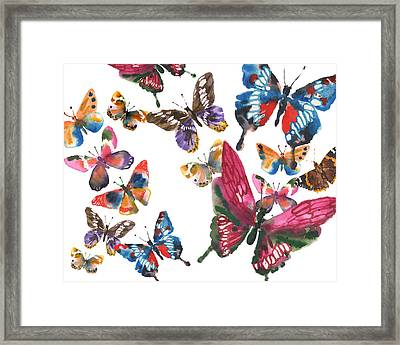 Butterfly Painting Framed Print by Alison Fennell