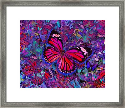 Butterfly Red Explosion Framed Print by Alixandra Mullins