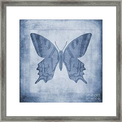 Butterfly Textures Cyanotype Framed Print by John Edwards