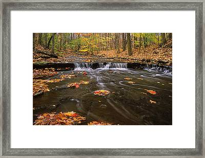 Buttermilk Falls Framed Print by Dale Kincaid