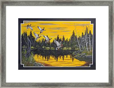 Bwca  Framed Print by Rudolph Bajak