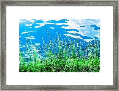 By The Blue Water Framed Print by Alexander Senin