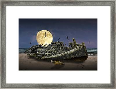 By The Light Of The Moon Framed Print by Randall Nyhof