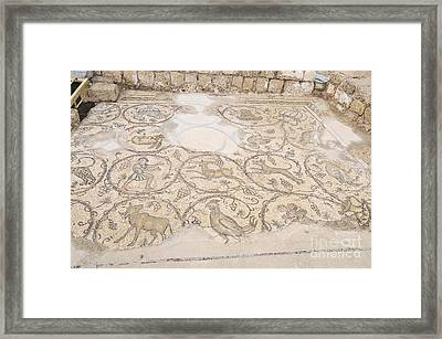 Byzantine Mosaic Depicting Animals And Hunting Scenes. Framed Print by Shay Levy