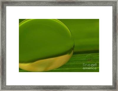 C Ribet Orbscape 0351 Framed Print by C Ribet