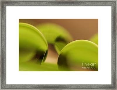 C Ribet Orbscape 0478 Framed Print by C Ribet