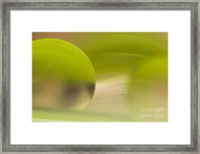 C Ribet Orbscape 0498 Framed Print by C Ribet