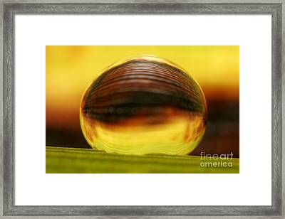 C Ribet Orbscape 0795 Framed Print by C Ribet