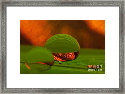 C Ribet Orbscape 1097 Framed Print by C Ribet