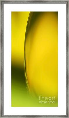 C Ribet Orbscape 8916 Framed Print by C Ribet