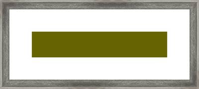 C.1.102-100-0.5x1 Framed Print by Gareth Lewis