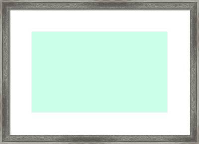 C.1.204-255-234.5x3 Framed Print by Gareth Lewis