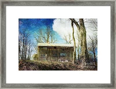 Cabin Fever Framed Print by A New Focus Photography